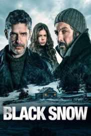Nieve negra poster