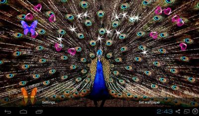 3D Peacocks Live Wallpapers APK Download - Free Personalization APP for Android | APKPure.com