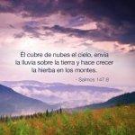 Imágenes Cristianas con Salmos (15)