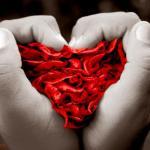 Imágenes de la Santa Muerte del amor (9)