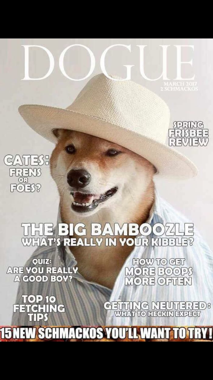 Large Of What Dog Are You Quiz