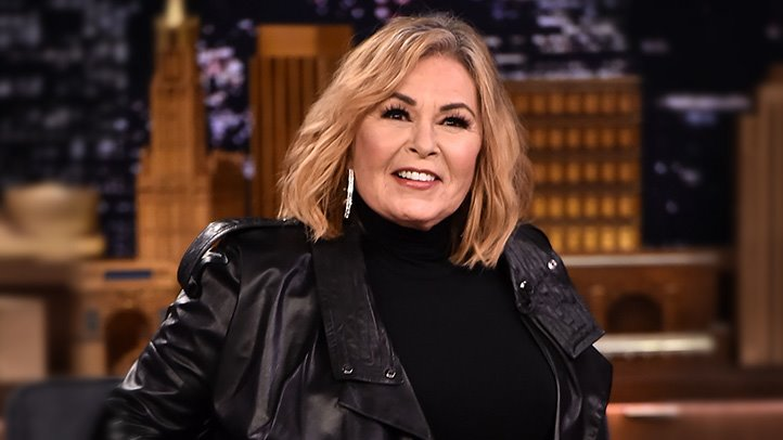 Roseanne Barr Blames Ambien  But What Is the Truth About the Sleep     Roseanne Barr Blames Ambien  But What Is the Truth About the Sleep Aid