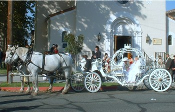 Horse Carriage Rentals - Horse and Carriage Rental Directory