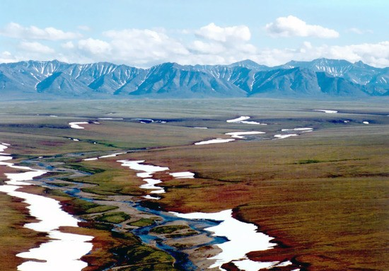 Area 1002 of the Arctic National Wildlife Refuge coastal plain, looking south toward the Brooks Range mountains.