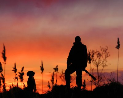 23+ Hunting Backgrounds, Wallpapers, Images, Pictures ...