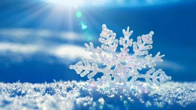 27+ Frozen HD Backgrounds, Wallpapers, Images, Pictures | Design Trends - Premium PSD, Vector ...