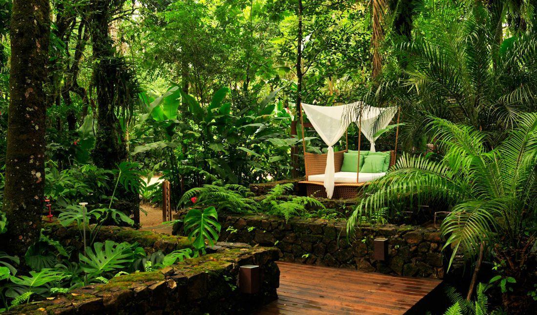 Dise o de exteriores jardines modernos y tropicales for Jardines exteriores
