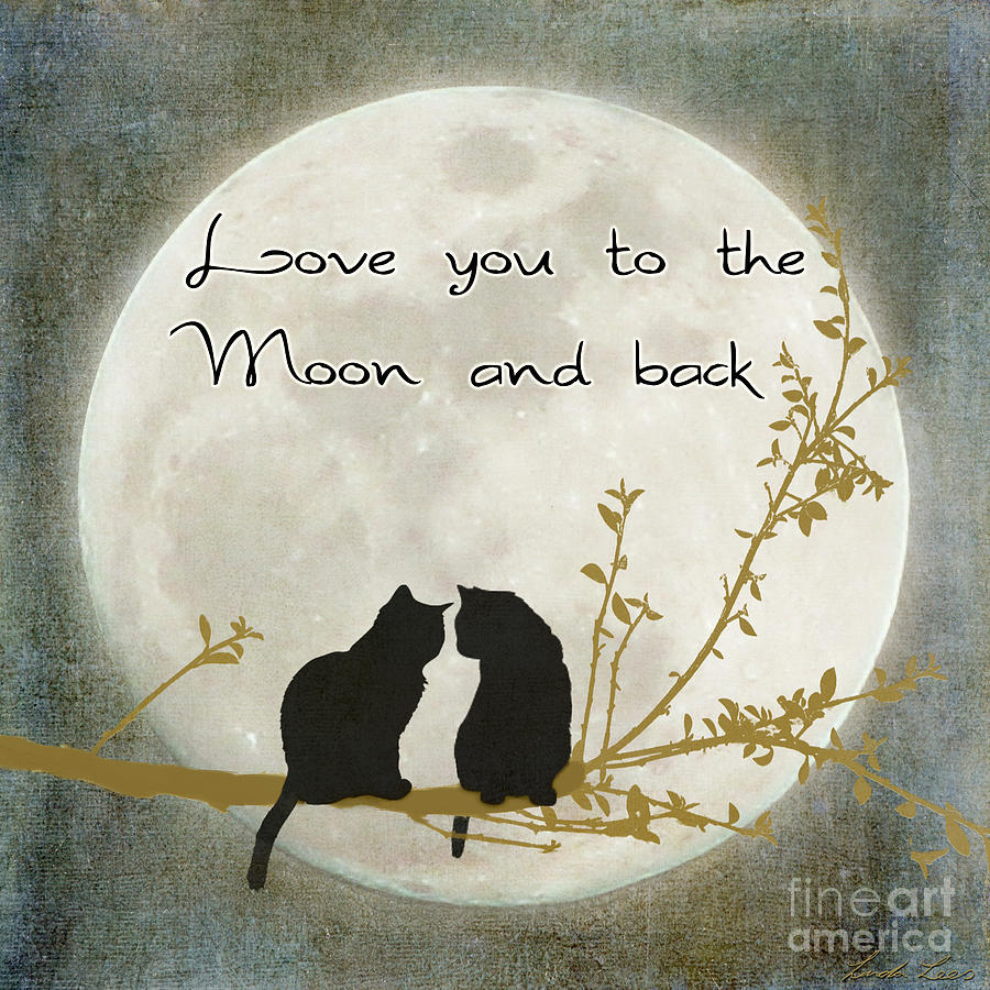 Sparkling Back Song Moon Love You To Moon Back Alice Kristiansen Piano Back Digital Art By Linda Lees Moon inspiration Moon And Back
