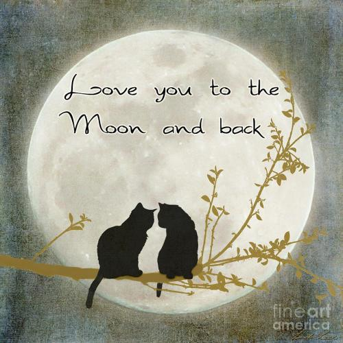 Medium Of Moon And Back