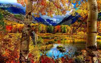 21+ Autumn Backgrounds, Fall Wallpapers, Pictures, Images | FreeCreatives