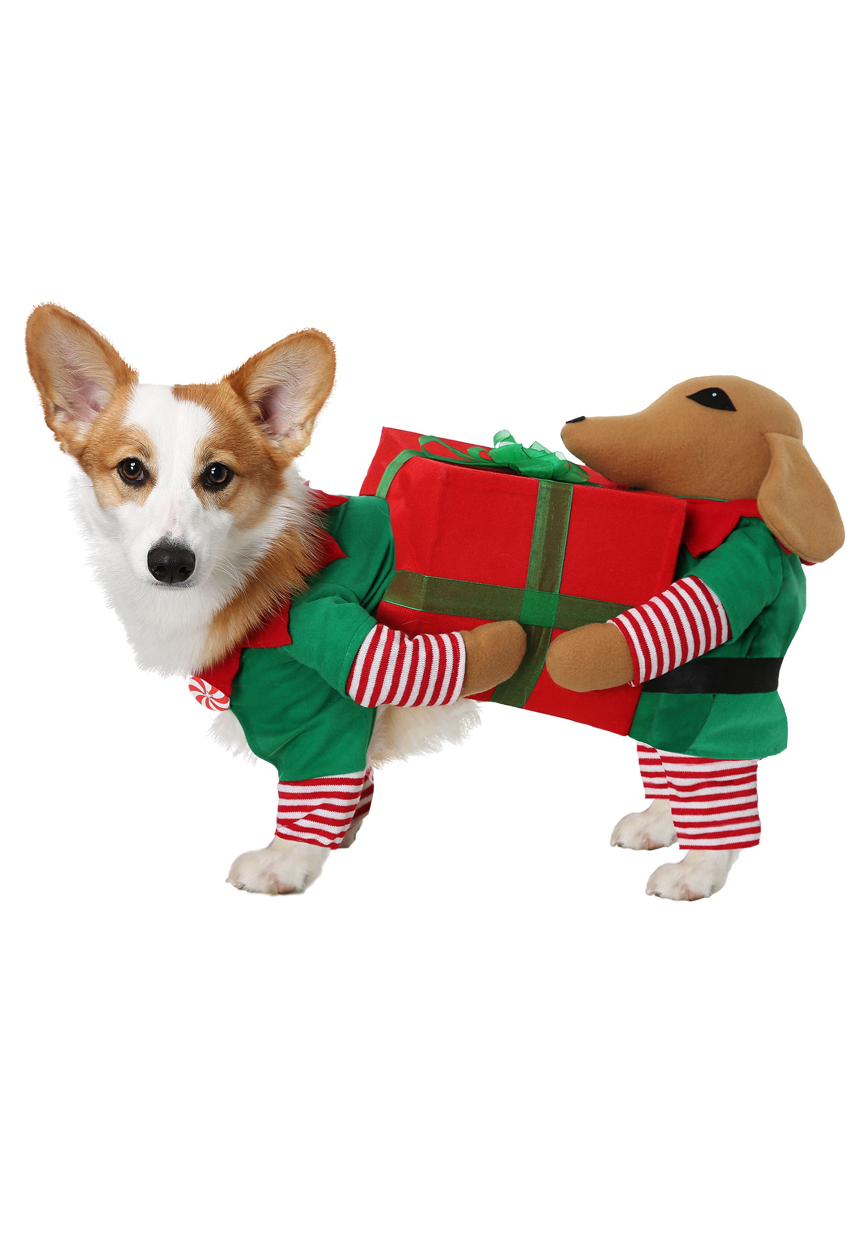 Charm Little Helper Dog Costume Results For Interests Pirates Little Helper Alternative baby Pirates Little Helper