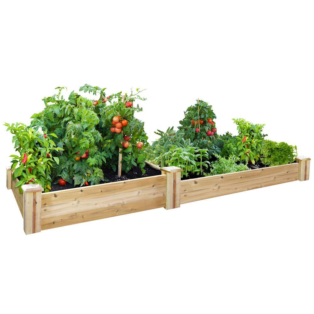 Fullsize Of Home Gardening Kit