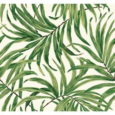 York Wallcoverings Tropics Bali Leaves Wallpaper-AT7050 - The Home Depot