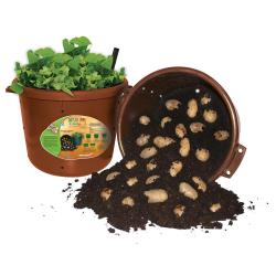 First Terra Cotta Emsco City Pickers Spud Tub Garden Potato Planter Emsco City Pickers Spud Tub Garden Potato Planter Terra Growing Potatoes S Hydroponically Growing Potatoes S Uk
