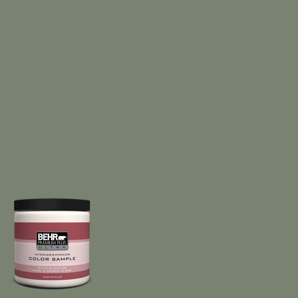 Unusual Sage Green Behr Premium Ultra Paint Colors Icc 77u 64 1000 Sage Green Paint Kitchen Sage Green Painted Walls houzz-03 Sage Green Paint