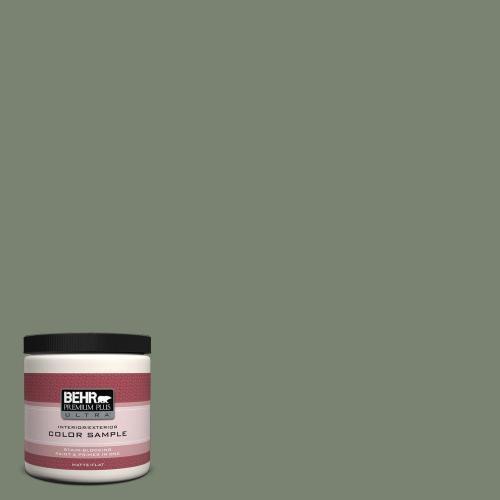Medium Of Sage Green Paint