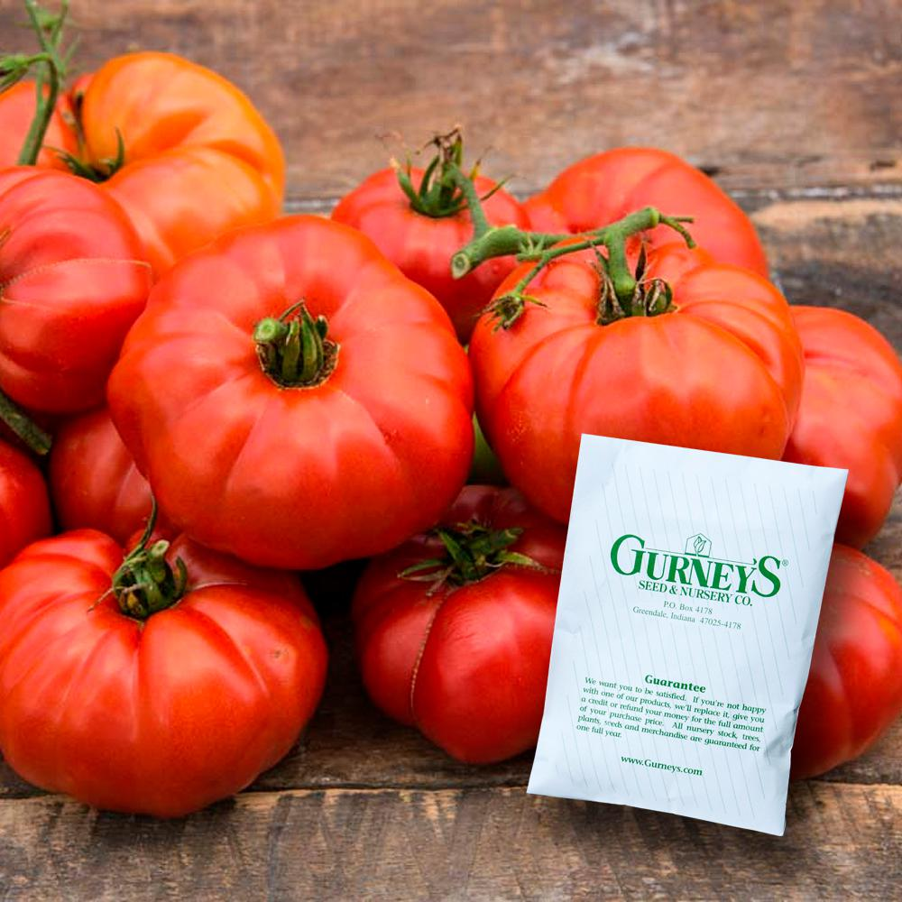 Catchy Tomato Ruby Monster Hybrid Seed Tomato Ruby Monster Hybrid Seed Gurney S Seed Nursery Co Reviews Gurney S Seed Nursery Co Catalog houzz-03 Gurneys Seed And Nursery Company