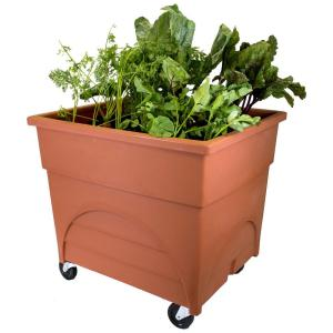 Marvellous Terra Cottawith Casters Emsco Pots Planters Garden Center Home Depot Home Depot Vegetable Garden Box City Pickers Root Picker Raised Bed Root Vegetable Grow Box