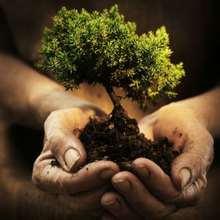 Écologie, Le développement durable expliqué aux enfants