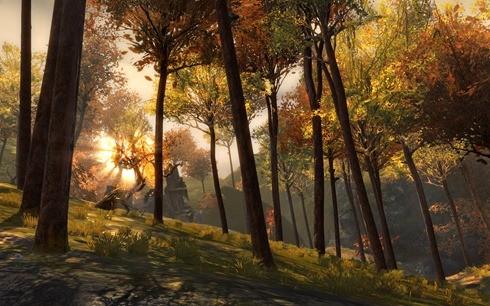 2 Black Citadel Forest