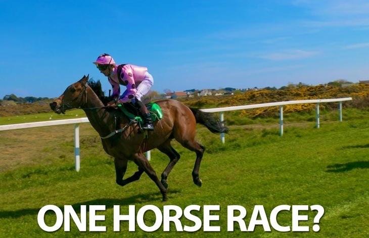 Onehorse