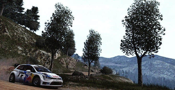 WRC 4 (7)