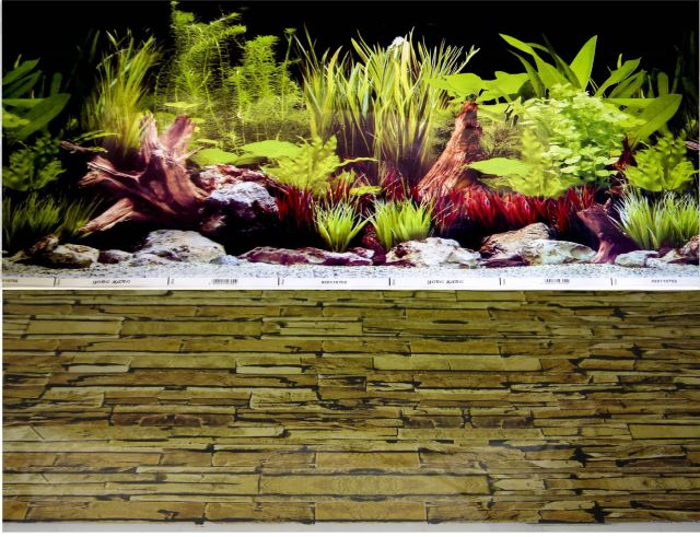 Aquarium Background 40cm Backdrop Fish Tank Vivarium Marine | eBay