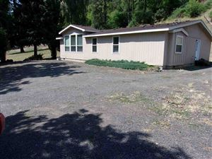 Photo of 41355 Little Canyon Road, Peck, ID 83545 (MLS # 135203)