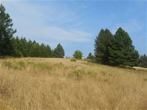 Photo of Loseth Road, Orofino, ID 83544 (MLS # 135213)