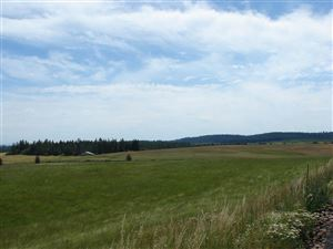 Photo of tbd Ceres Drive, Lenore, ID 83541 (MLS # 134217)