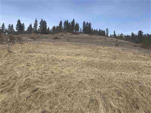 Photo of TBD Old Peck Grade, Lenore, ID 83541 (MLS # 136426)