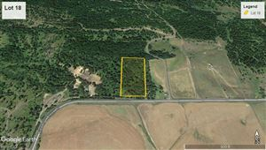 Photo of tbd Lot 18 Ceres Drive, Lenore, ID 83541 (MLS # 136465)