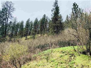 Photo of TBD Ellis Ave, Orofino, ID 83544 (MLS # 135776)
