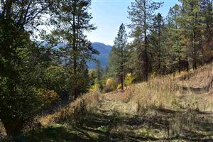 Photo of 599 Lakeview Road, Orofino, ID 83544 (MLS # 135780)