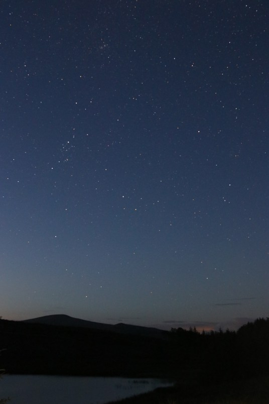Perseid Shower