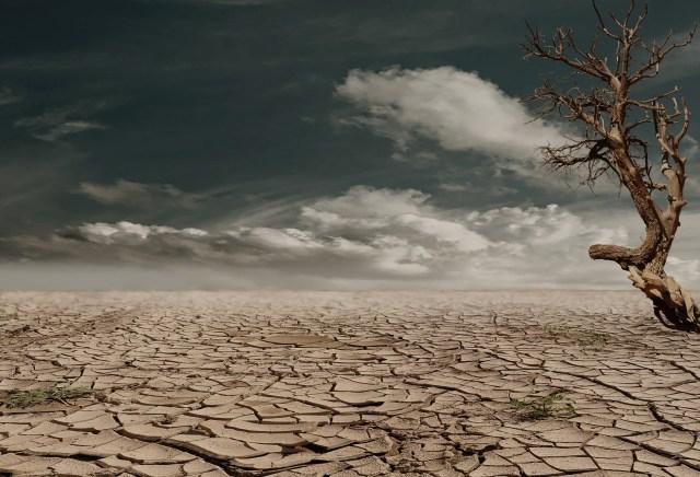 dry skin desert
