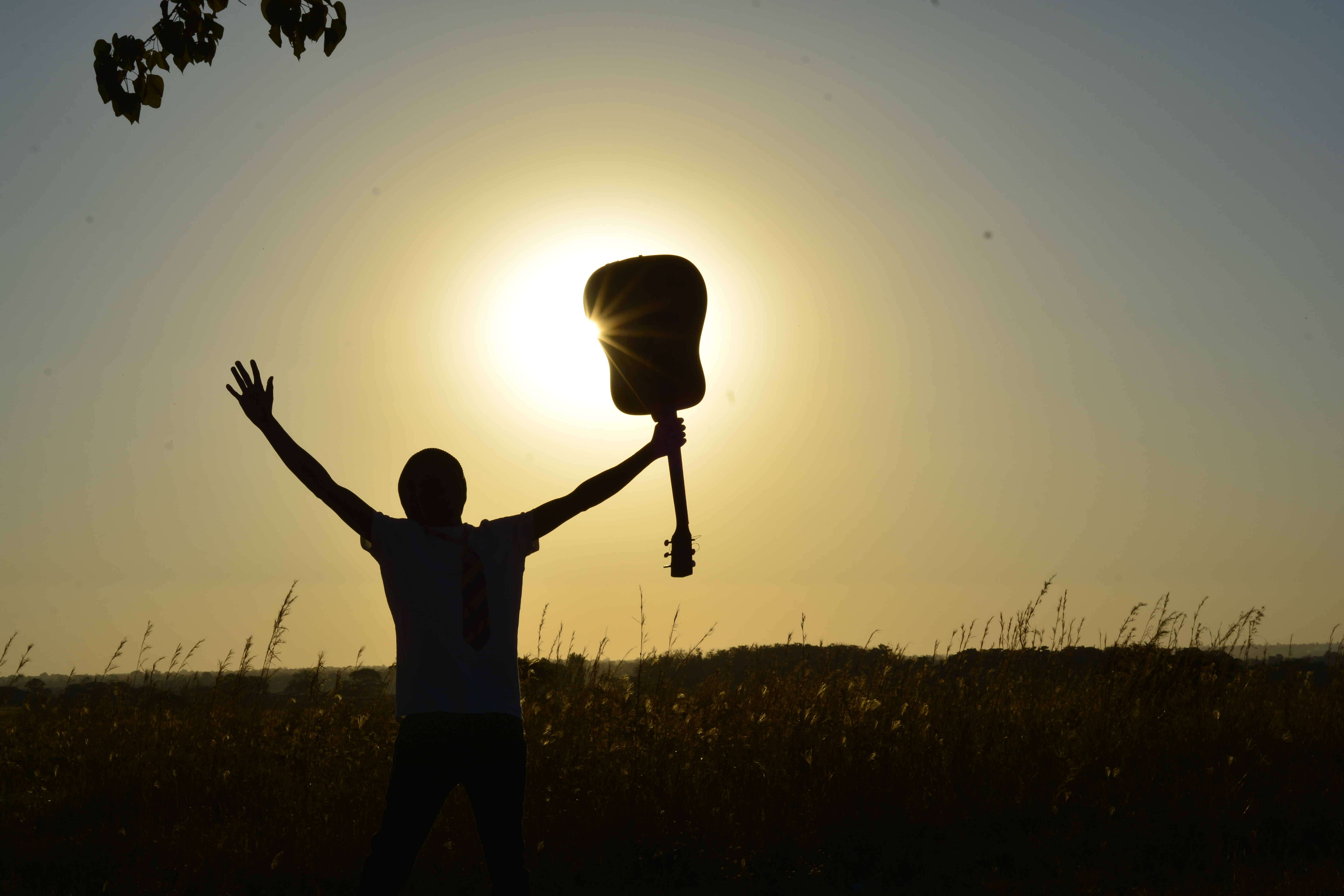 Silhouette of Man Holding Guitar on Plant Fields at Daytime