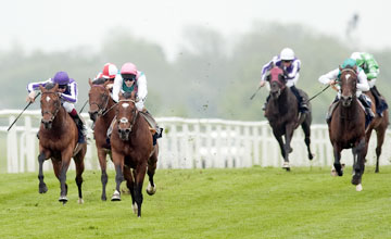 Frankel (Tom Queally) win the Lockinge
