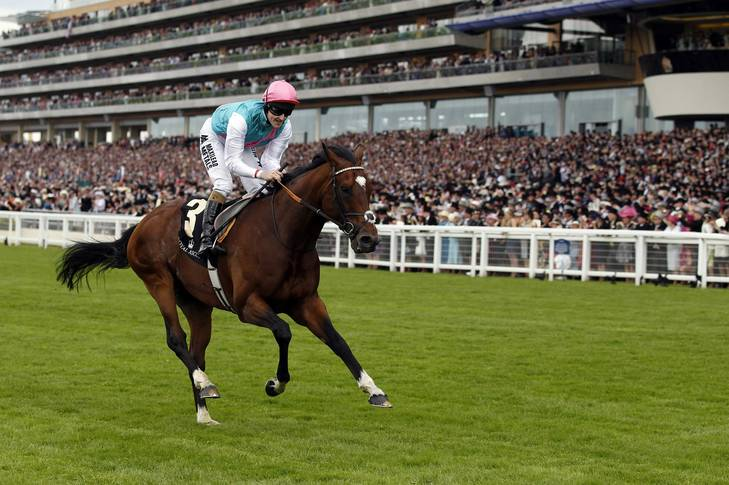 The world's top-rated racehorse, <a class=
