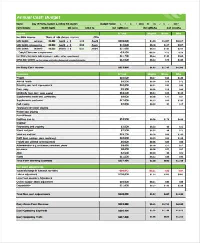 10 Cash Budget Templates - Free Sample,Example Format Download   Free & Premium Templates