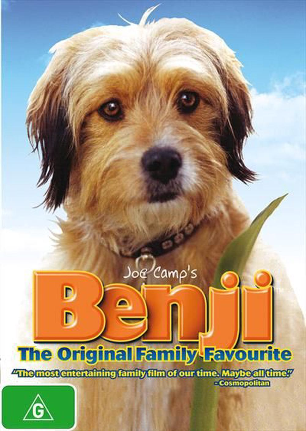 Fullsize Of What Kind Of Dog Was Benji