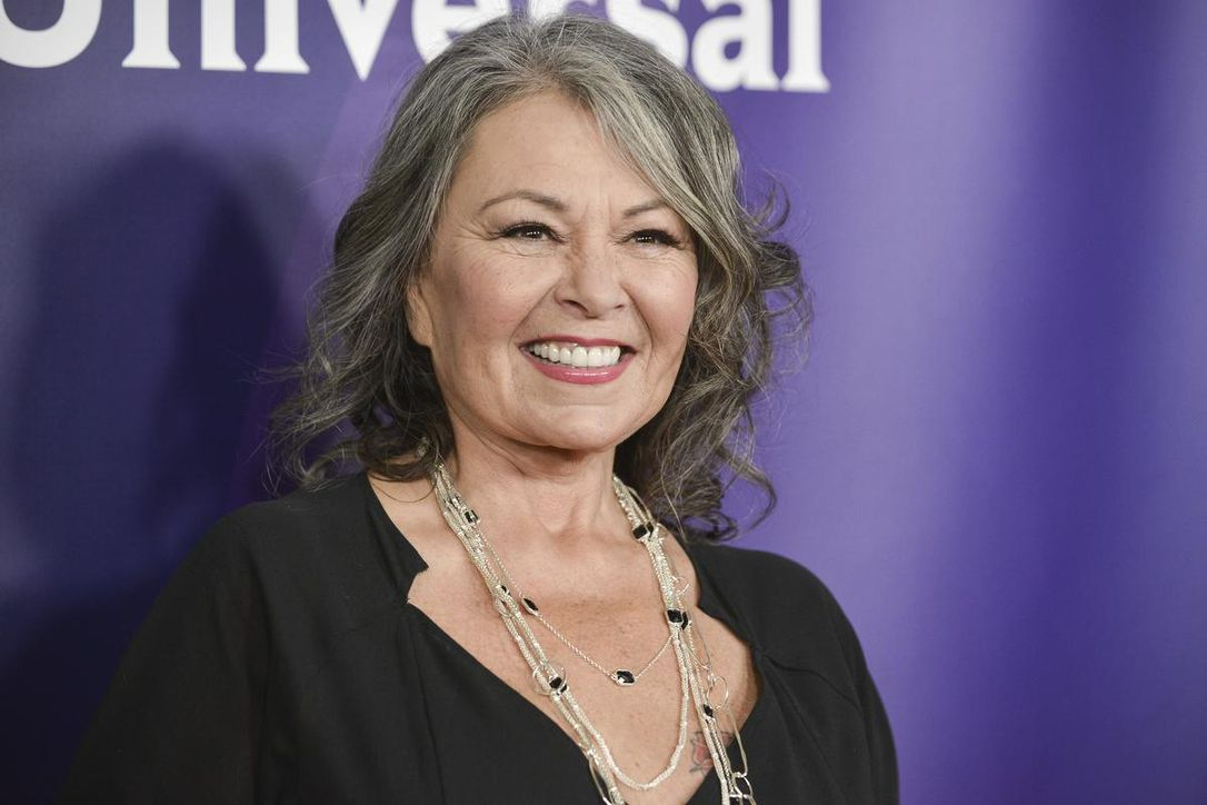 Roseanne Barr defends racist Valerie Jarrett tweet   I thought the     Two weeks after her initial apology  Roseanne Barr said the controversial  tweet was about