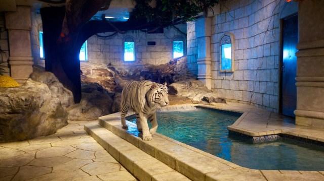 Downtown Aquarium   Houston   Tourism Media