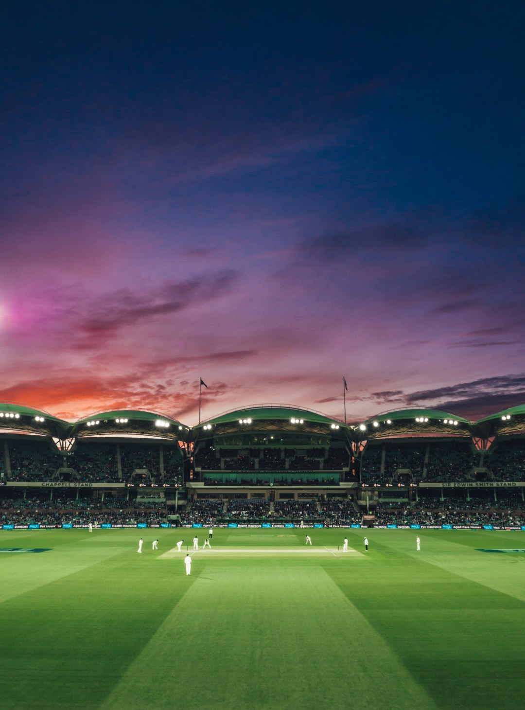 100+ Cricket Pictures [HD] | Download Free Images & Stock Photos on Unsplash