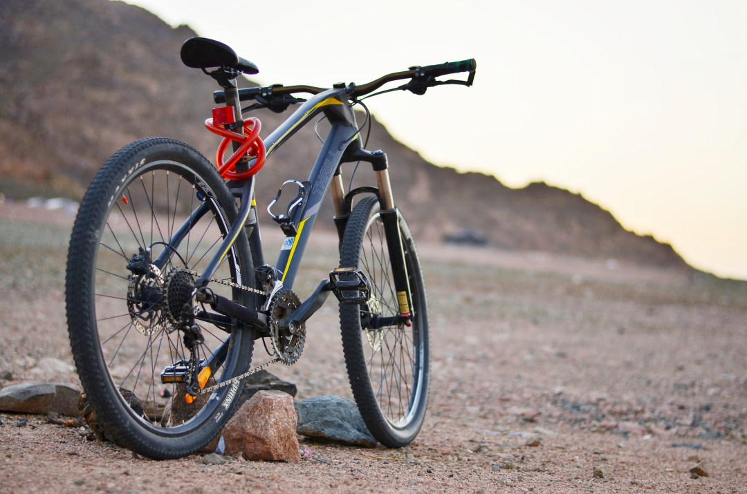 20+ Mountain Bike Pictures   Download Free Images on Unsplash