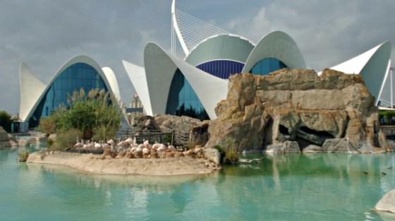La Città dell'arte e della scienza a Valencia, in Spagna.