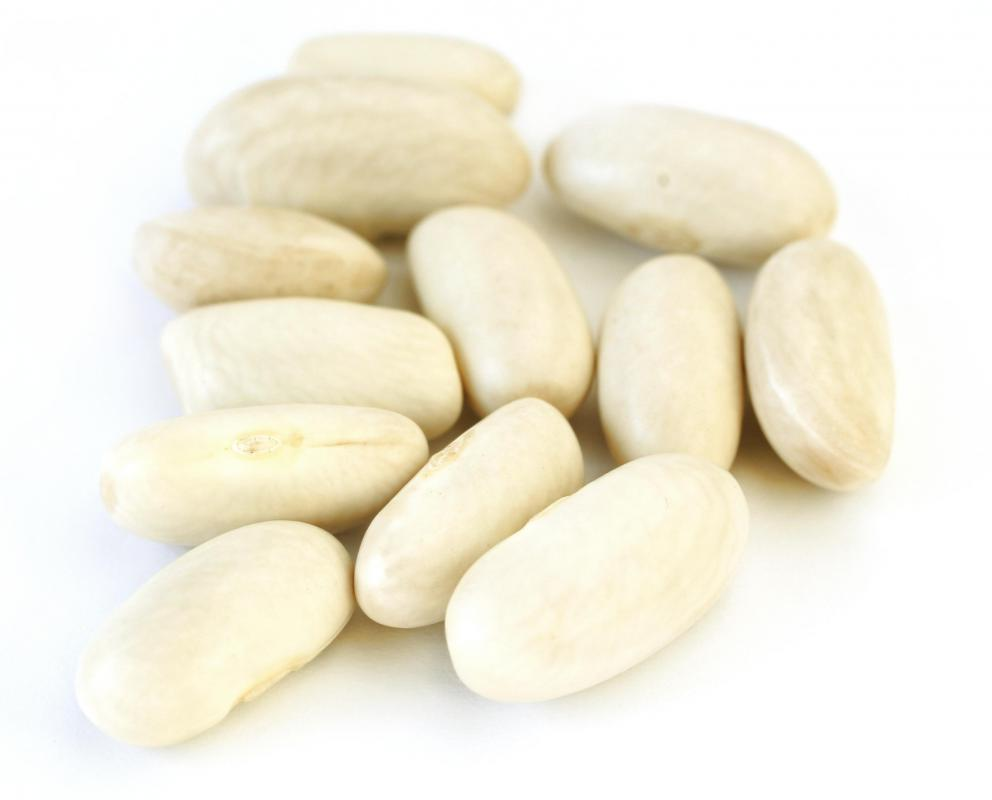 Great What Are What Are Canned Beans What Are Beans Jamie Oliver Norrn A Type nice food What Are White Beans
