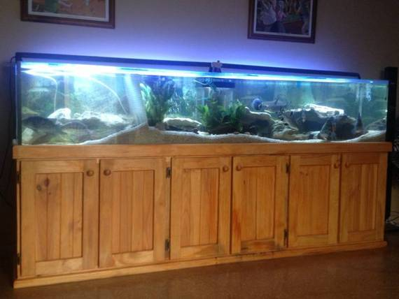 ft fish tank aquarium with weir 4 ft multistage sump tank and
