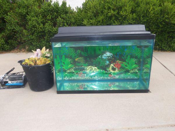 New 75 gallon aquarium for sale expired 75 gal aquarium for 29 gallon fish tank