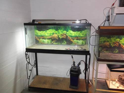 75 gallon aquariums for sale for Sale in Washingtn C H, Ohio